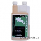 Dromy BOSWELLIA Serrata liq. 1000 ml